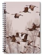 Cranes Across The Sky Spiral Notebook