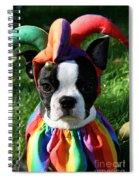Cranky Jester Spiral Notebook