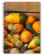 Crate Filled With Pumpkins And Gourts Spiral Notebook