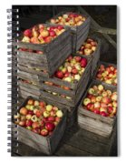 Crated Apples Spiral Notebook