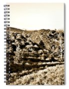 Craters Of The Moon1 Spiral Notebook