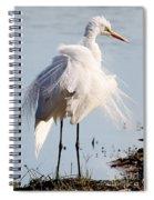 Crazy Egret Feathers Spiral Notebook