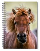 Crazy Mane Spiral Notebook