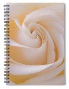 Creamy Swirl Spiral Notebook