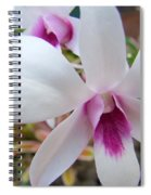 Creamy White And Hot Pink Orchid Spiral Notebook
