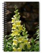 Creamy Yellow Snapdragon Spiral Notebook