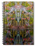 Creation 253 Spiral Notebook