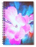 Creative Energies Spiral Notebook