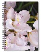 Creativity  Boundless Spiral Notebook