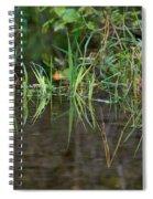 Creek Grass Spiral Notebook