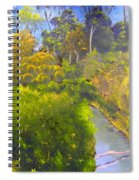 Creek In The Bush Spiral Notebook