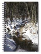 Creek In Winter Spiral Notebook