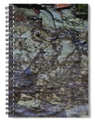 Creek Spiral Notebook