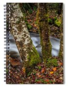 Creek With Trees Spiral Notebook