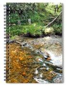 Creekside 4 Spiral Notebook