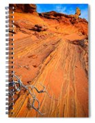 Creeping Branches Spiral Notebook