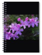 Creeping Phlox Spiral Notebook