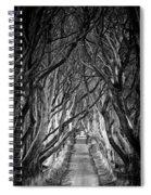 Creepy Dark Hedges Spiral Notebook