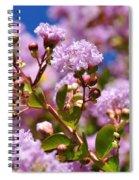 Crepe Myrtle Spiral Notebook