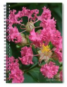 Crepe Myrtle Macro Spiral Notebook