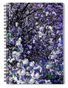 Crepe Myrtle Tree Purple Lilac Spring Spiral Notebook