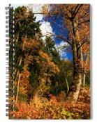 Crescent Colors Spiral Notebook