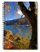 Crescent Through The Woods Spiral Notebook