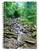 Cresheim Creek Spiral Notebook