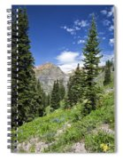Crested Butte Flowers Spiral Notebook