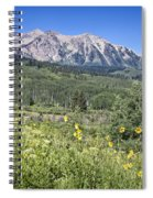 Crested Butte Scenery Spiral Notebook