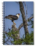 Crested Caracara Spiral Notebook