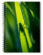 Cricket Silhouette Spiral Notebook