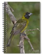 Crimson-collared Grosbeak Spiral Notebook