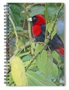 Crimson-collared Tanager Spiral Notebook