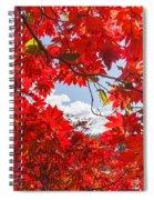 Crimson Red Leaves Background Spiral Notebook