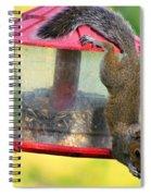 Critter Acrobat Spiral Notebook