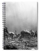 Donkey Train On Croagh Patrick Spiral Notebook
