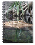 Crocodile Eyes Spiral Notebook