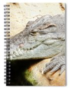 Crocodile Fractal Spiral Notebook