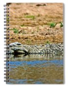 Crocodile In Watering Hole In Kruger National Park-south Africa Spiral Notebook