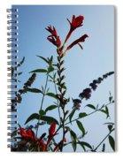 Crocosmia Sky Spiral Notebook