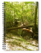 Crooked Creek  Spiral Notebook