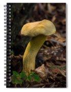 Crooked Stype Boletaceae Spiral Notebook