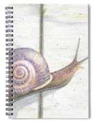 Crossing The Finish Line Spiral Notebook