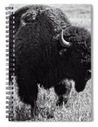 Crossing The Land Spiral Notebook