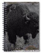 Crossing The Plains Spiral Notebook