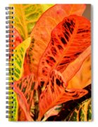 Croton's Many Colors Spiral Notebook
