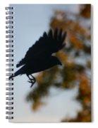 Crow In Flight 1 Spiral Notebook