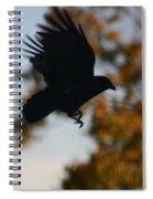 Crow In Flight 2 Spiral Notebook