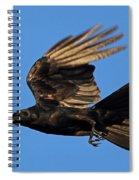 Crow In Flight Spiral Notebook
